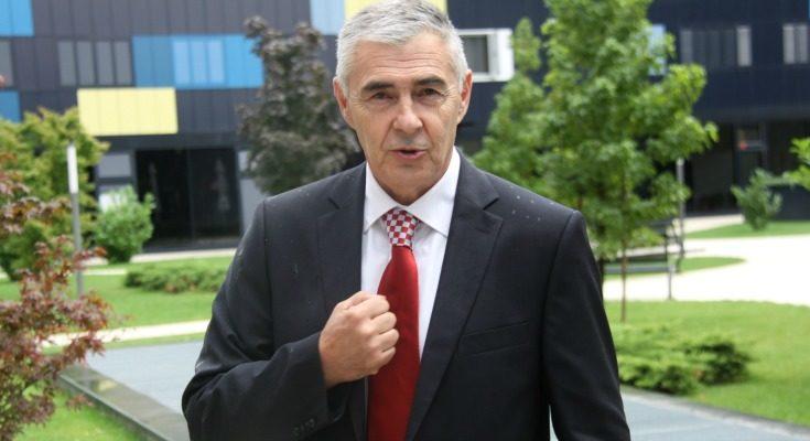 Image result for željko glasnović